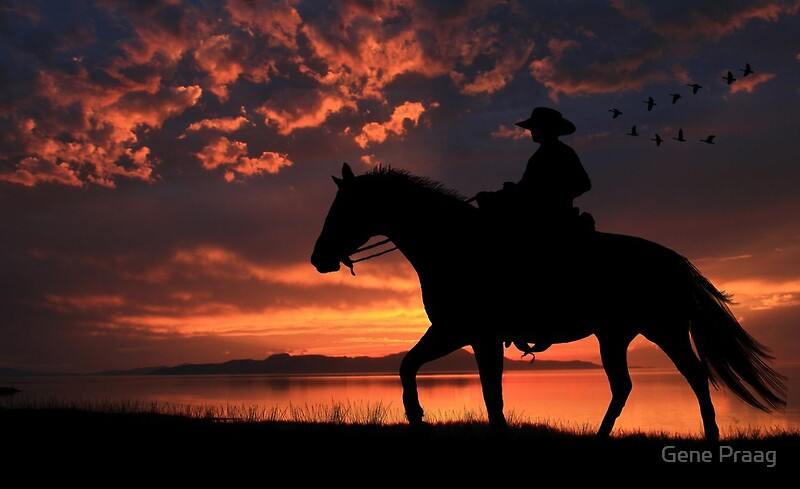 Free Clip Art Paint Horse With Sunset