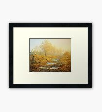 Soft Warmth Framed Print