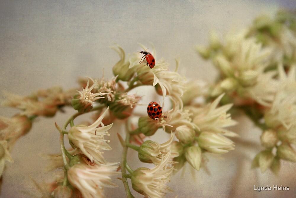 Two's company...... by Lynda Heins