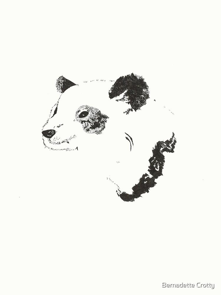 Panda by Bernadette Crotty