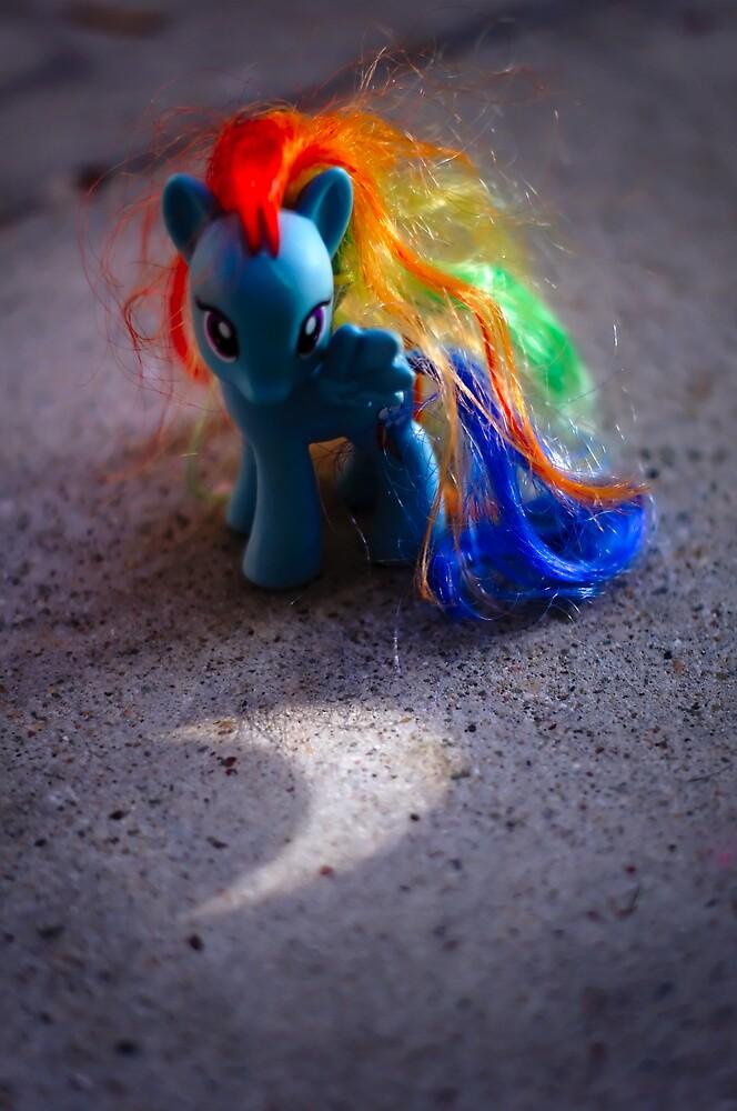 Rainbow Dash's Eclipse by MacLeod