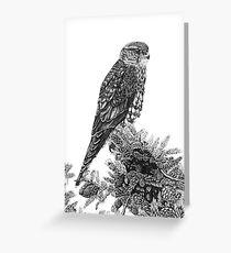 MERLIN (Bird of Prey) Greeting Card