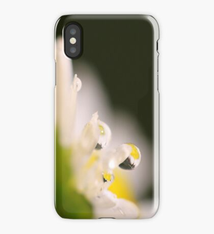 The Tears of the Daisy iPhone Case