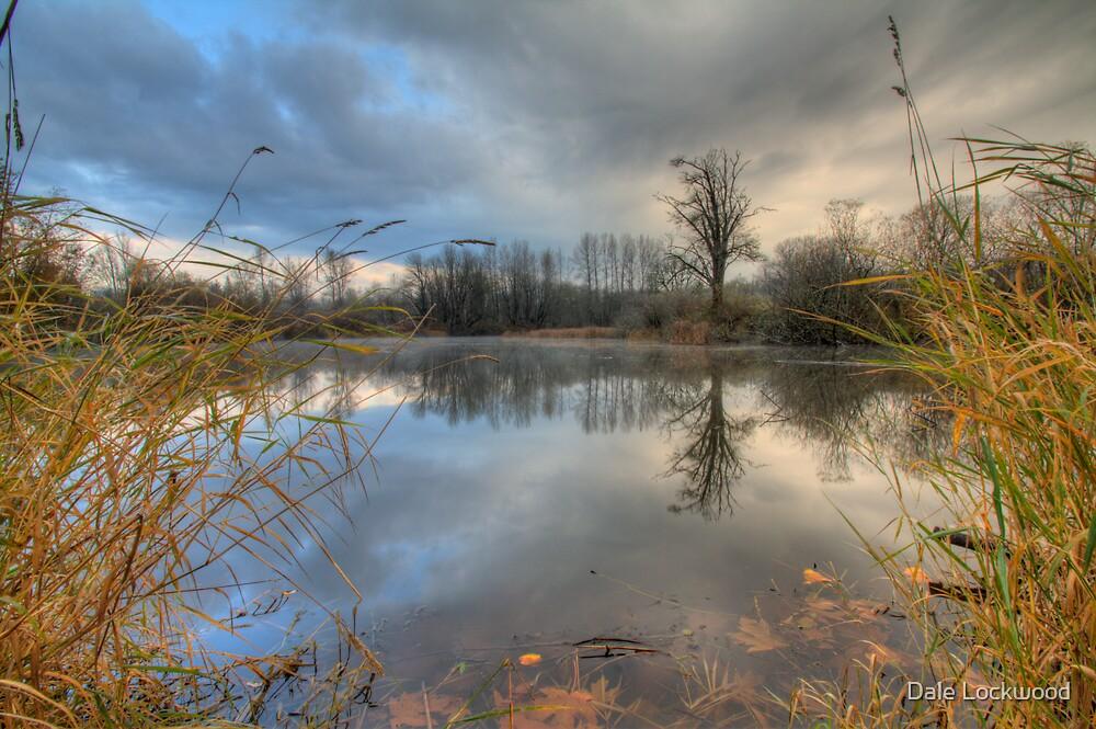 Meadowbrook Slough by Dale Lockwood