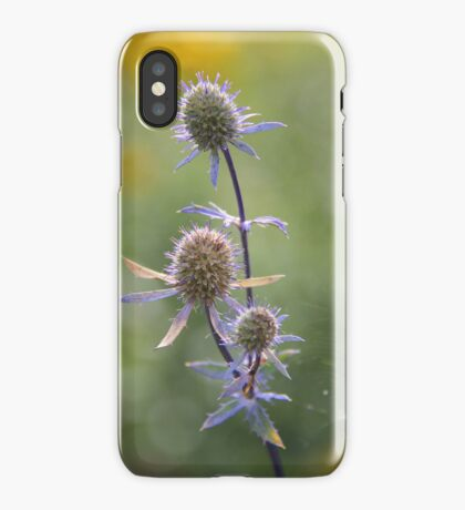 Autumn Morning iPhone Case