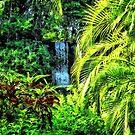 Bahamas - Tropical Waterfall by Susan Savad