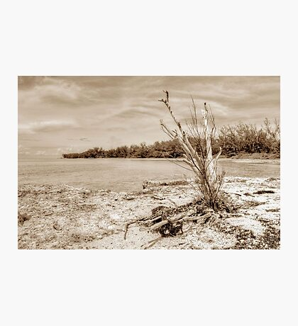 The Sentinel at Coral Harbour in Nassau, The Bahamas Photographic Print