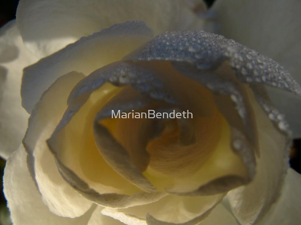 Rain ripples by MarianBendeth