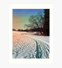 A snowy trail and some trees Art Print
