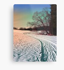 A snowy trail and some trees Metal Print