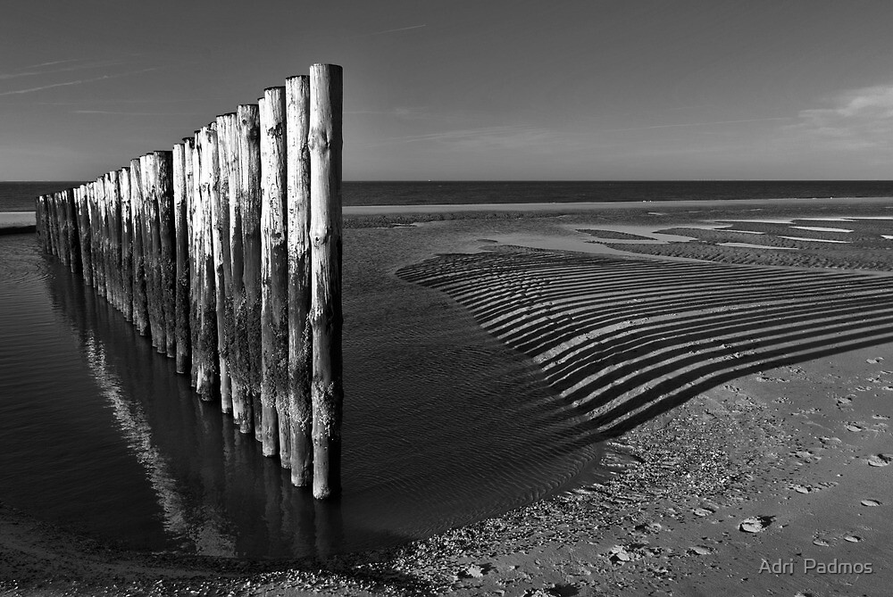 North Sea Beach in B&W by Adri  Padmos