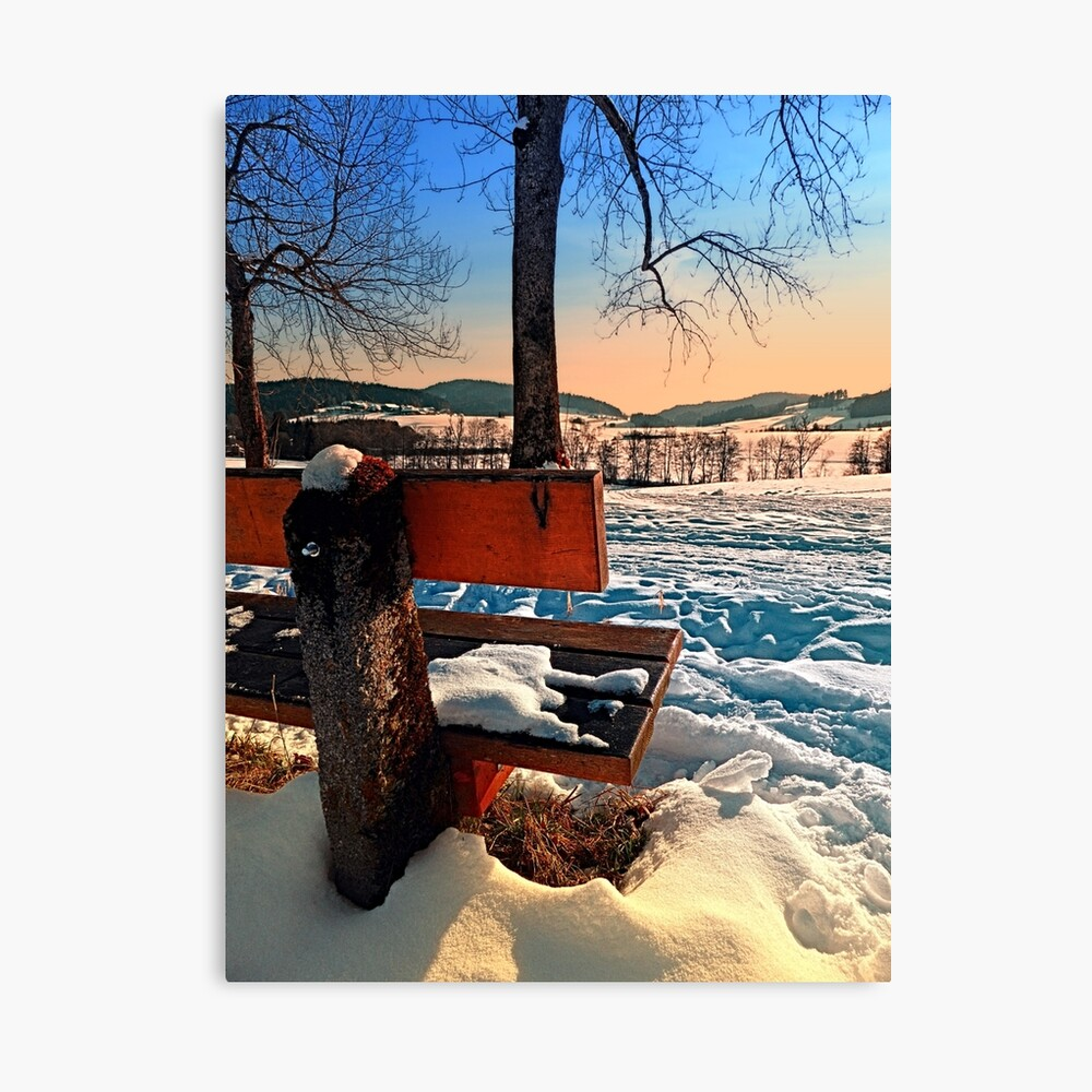 View into winter scenery Canvas Print