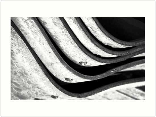 Curvature by Elizabeth McPhee