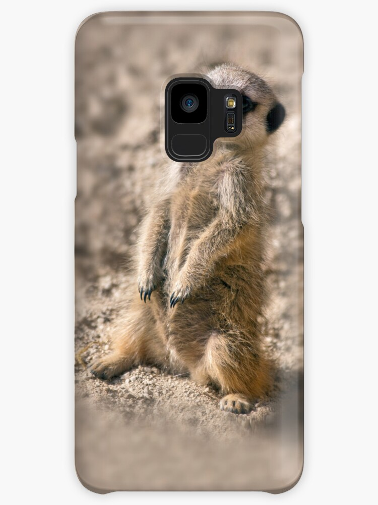 Sentry-in-Training iPhone & iPod Case by Krys Bailey