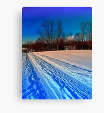 Traces on a winter hiking trail Canvas Print
