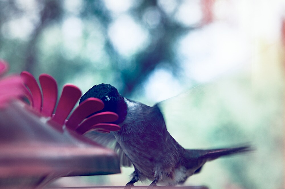 fluttering fairies of flight by nashiwashi