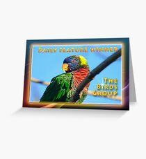 Daily Features Banner _ The Birds Group Greeting Card