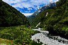 Otira River in Arthurs Pass by Yukondick