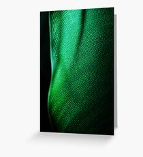 Green Two Greeting Card