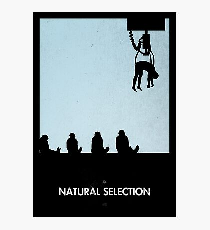 99 Steps of Progress - Natural selection Photographic Print