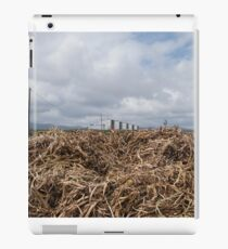 Suburb_1 iPad Case/Skin