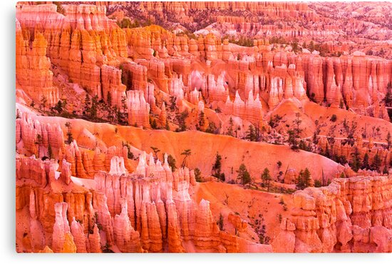 Bryce Canyon by kwreaves