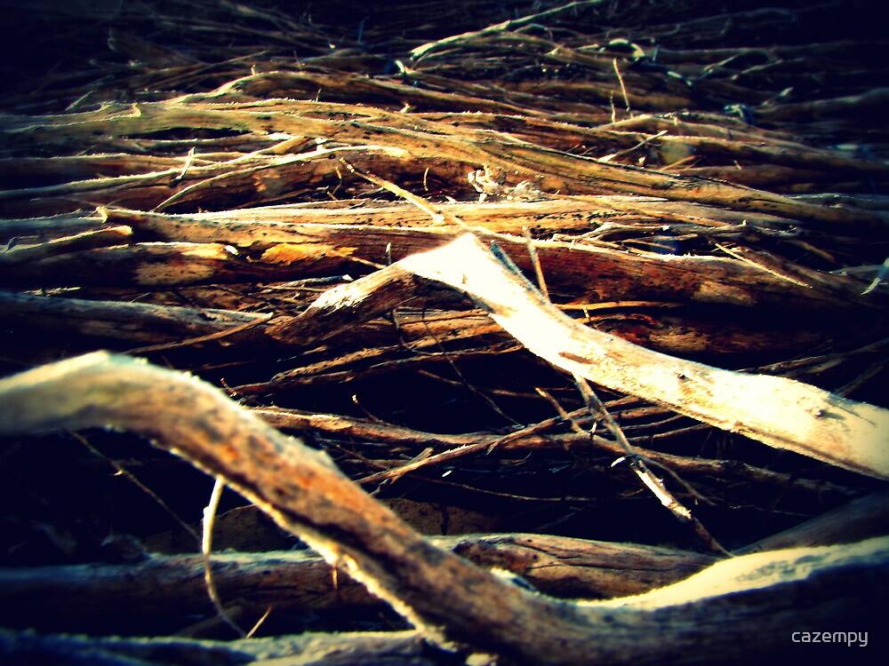 Sticks by cazempy