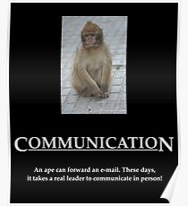 Communication Poster Poster