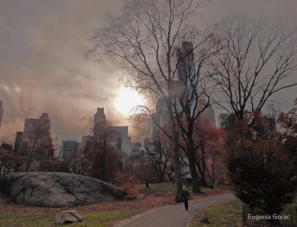 Fall Sunset  by Eugenia Gorac