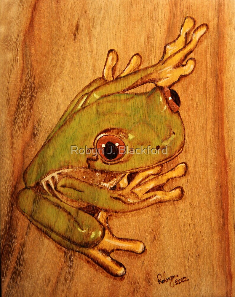 PYROGRAPHY: Tree Frog by aussiebushstick