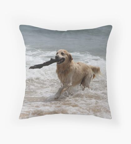 I Got It! Throw Pillow