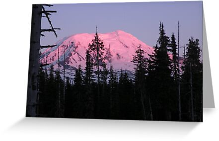 Pink Snow Cone! Mt. Adams by Denise L. Bartlow