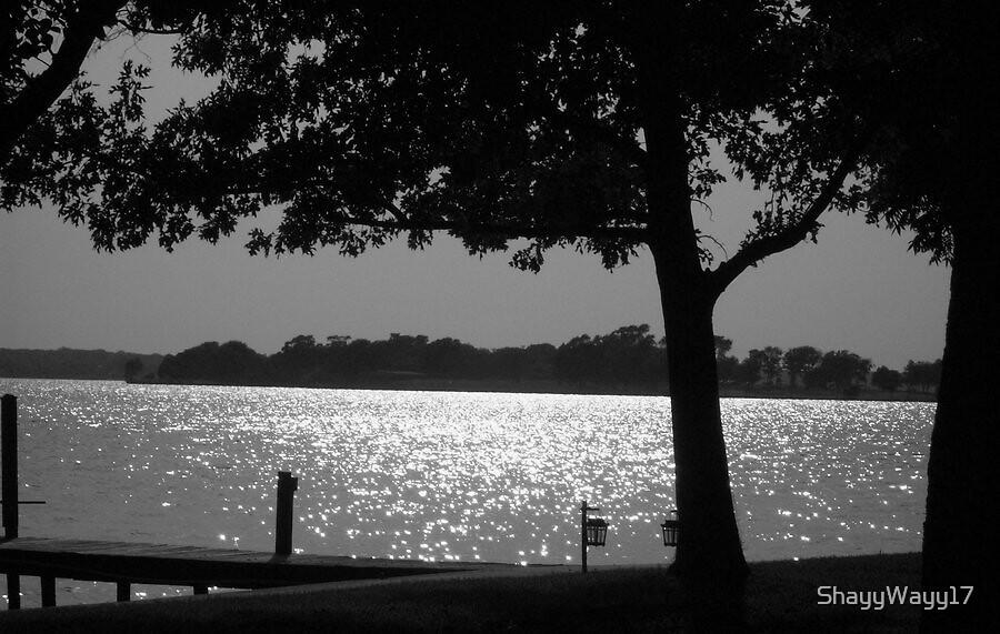 Lake Scene by ShayyWayy17