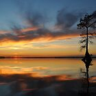Sweeping Sunset by Michele Conner