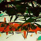 barracuda.... by banrai