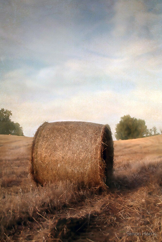 Harvest Time by Simon Harris