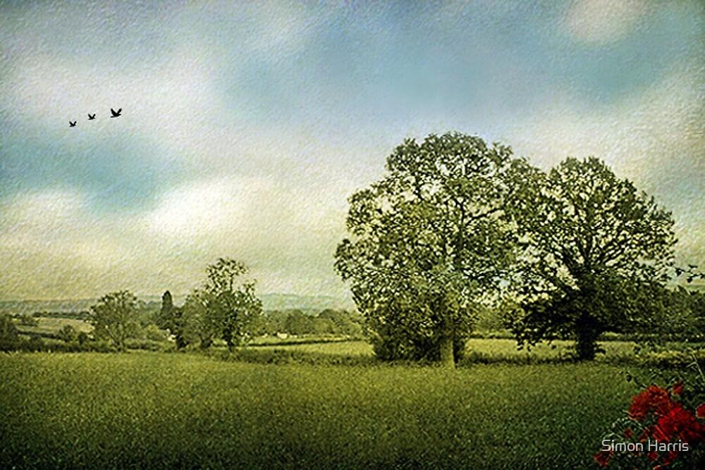 Summer Fields by Simon Harris