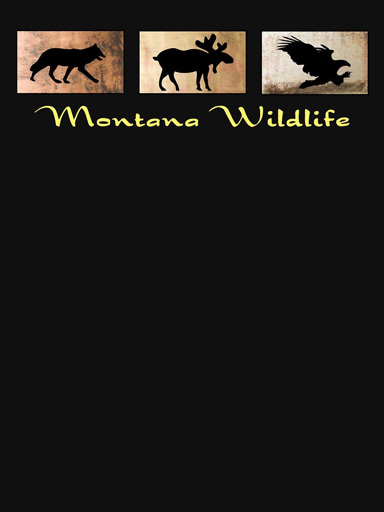 Montana Wildlife by pjwuebker