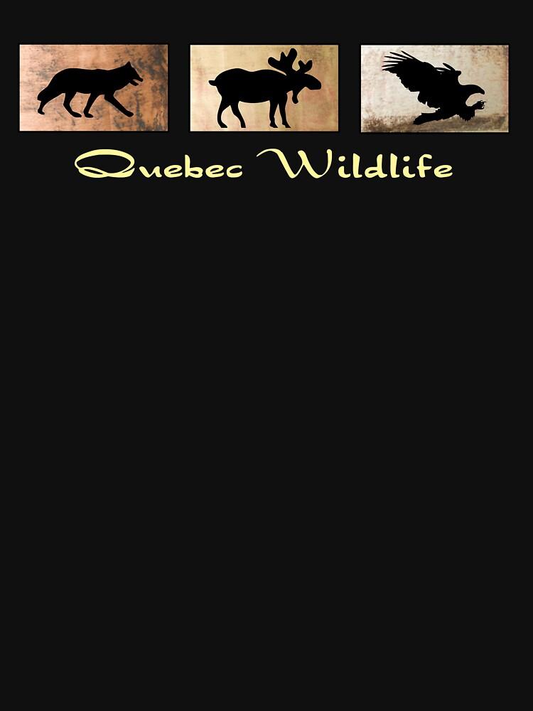 Quebec Wildlife by pjwuebker