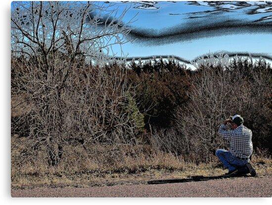 Photographing an American Buckeye Tree by Scott Hendricks