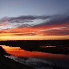 Stacy, North Carolina Sunset by BigD