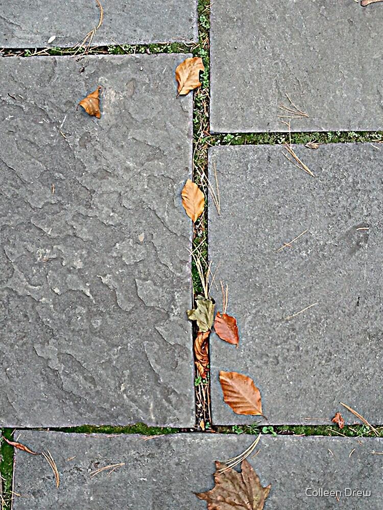 Autumn Blocks by Colleen Drew