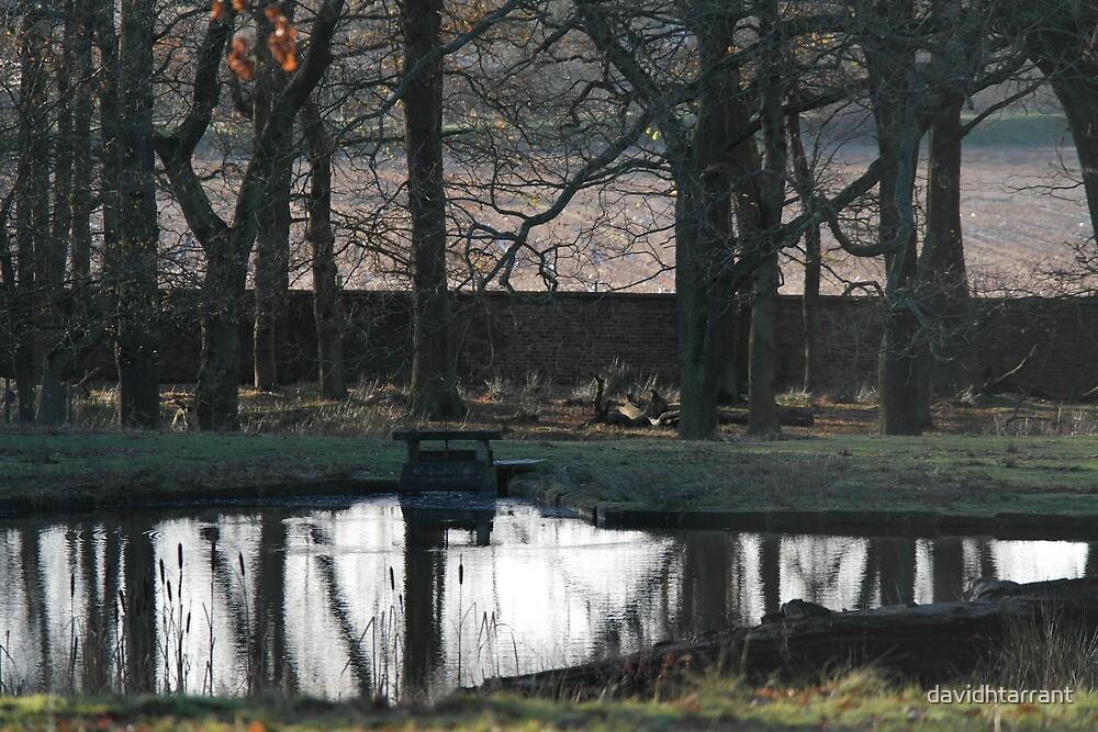 dunham park pond by davidhtarrant