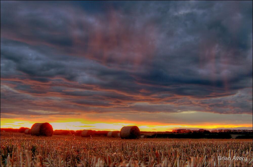 Burning Rain by Brian Avery