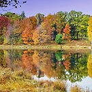 Parker Dam State Park Lake by Penny Fawver
