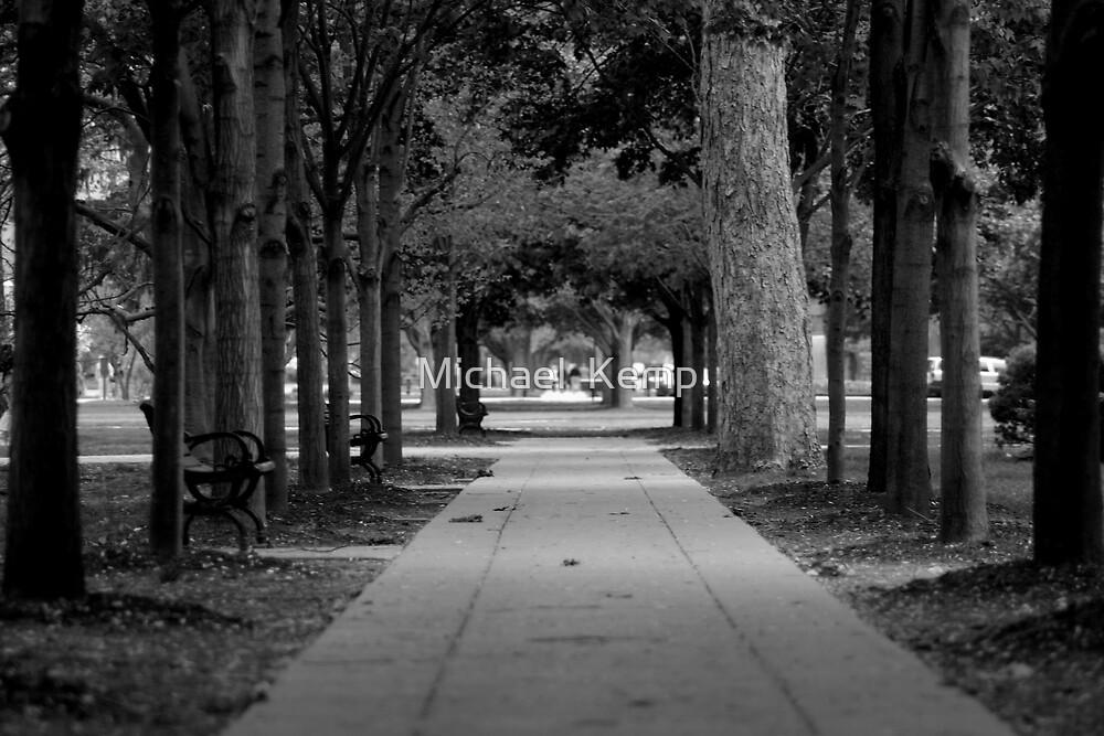 Trees by Michael  Kemp