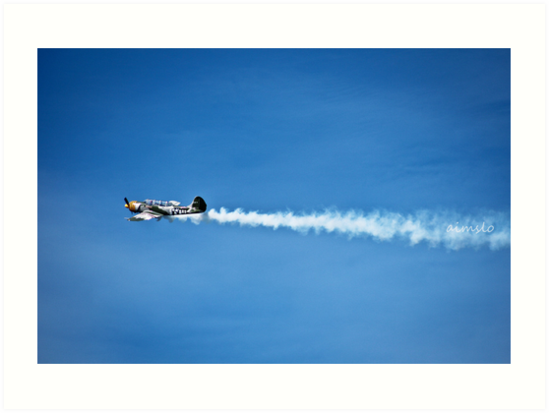YAK 52 WarBird Plane by -aimslo-