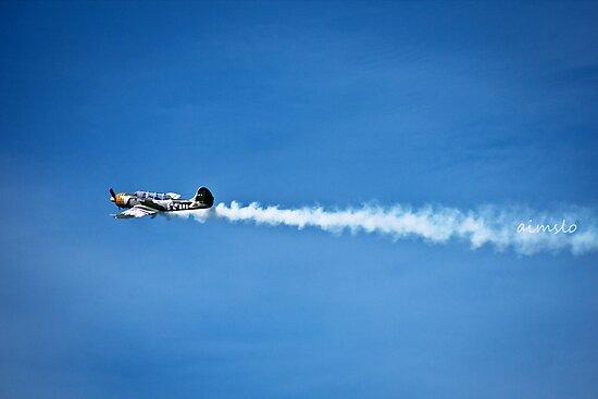 YAK 52 WarBird Plane by -aimslo-