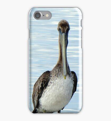 Pelican (iPhone Case) iPhone Case/Skin