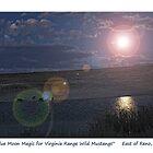 """Blue Moon Magic"" for Virginia Range mustangs, TRI NV by Ellen  Holcomb"